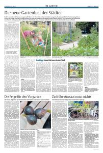 Rheinpfalz_März2016-page-001
